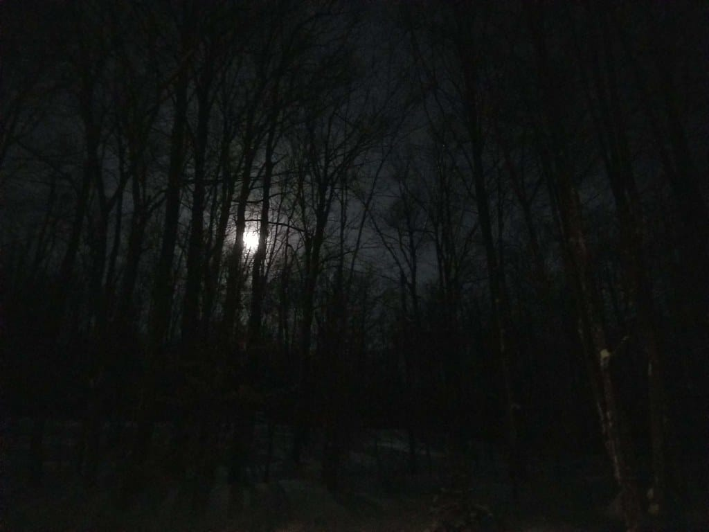 12 Tips For Airsoft Night Time Play
