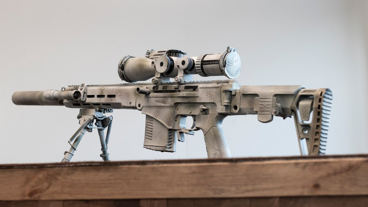 Airsoft DMR Meaning